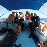 Cancun Whale Shark Tour Riviera Maya Whaleshark