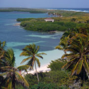 Private Tours Cancun. Private Tours Playa del Carmen